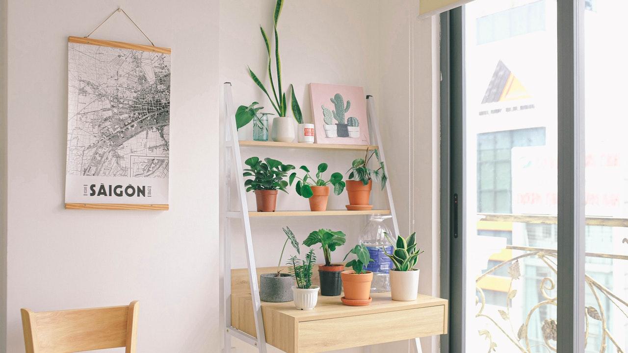 Có những mẫu kệ trang trí cửa sổ đẹp nào đang hot?